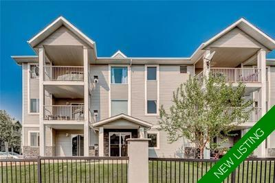 Dover Condo for sale:  1 bedroom 734 sq.ft. (Listed 2019-05-31)
